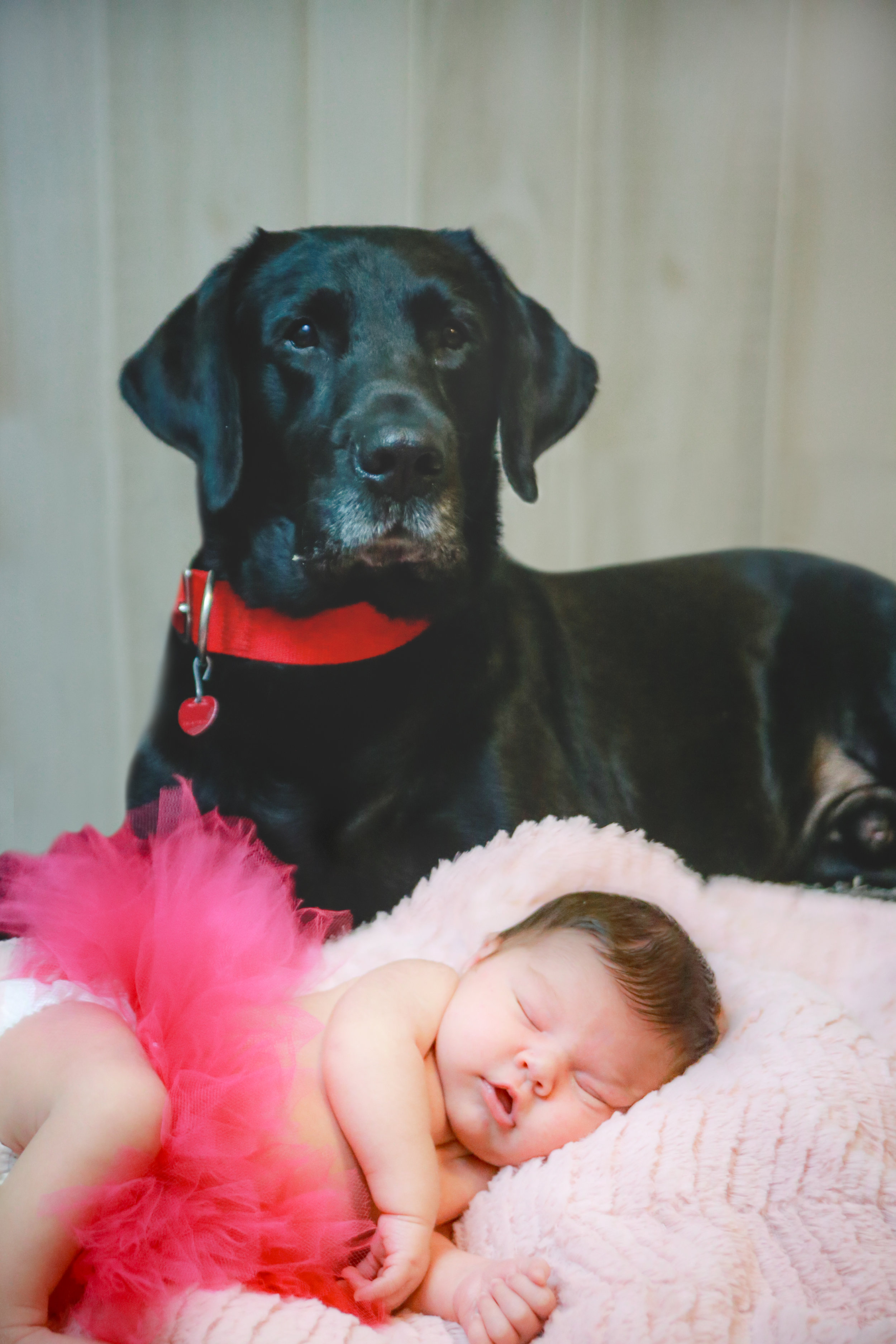 Gainesville Newborn Family Photography