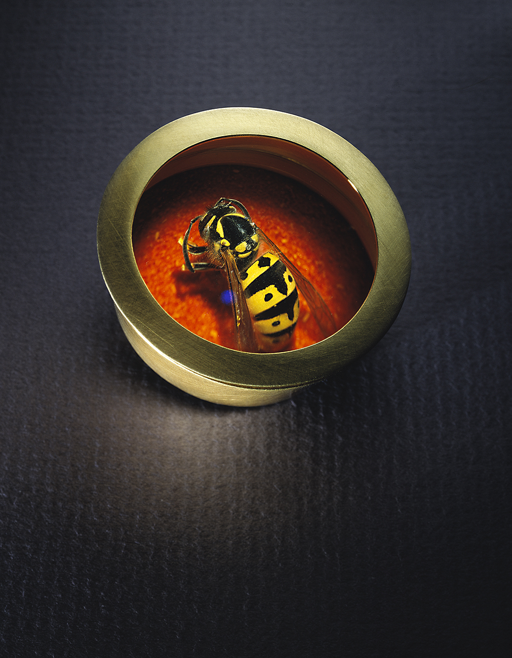 Queen Bee Brooch.jpg