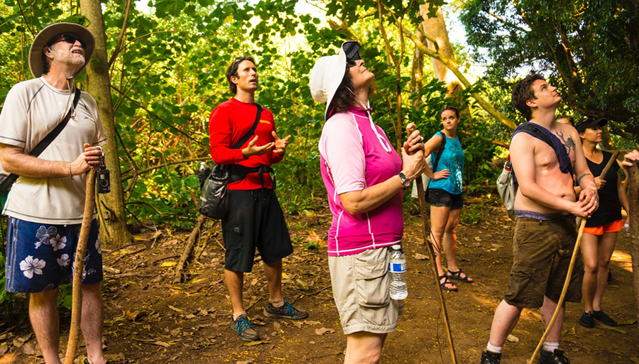 Aaron Martin, owner of  ActivityKauai.com  often leads kayaking and other adventure tours to amazing locations on Kauai's interior. Here, he briefs a group of visitors who kayaked the Wailua River and hiked through rainforest to Wailua Falls about the island's ancestral past and the spectacular songbirds living beneath the dense tree canopy.