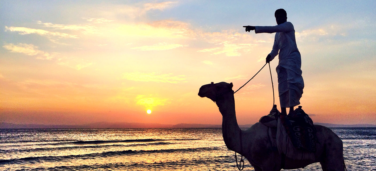 sunrise-dahab-paradise-man-camel-pointing.jpg