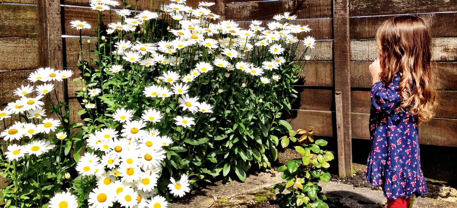 amy-flowers.jpg