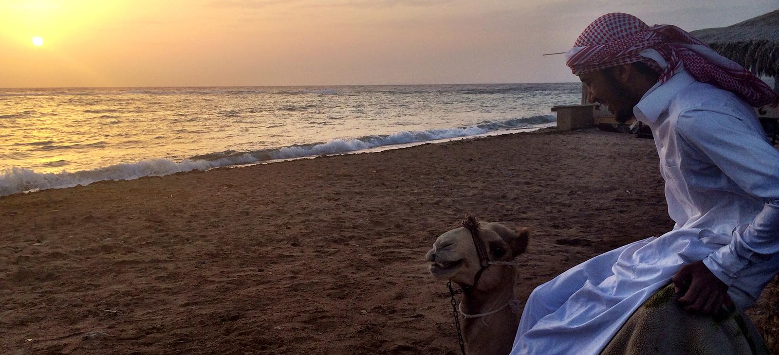 ramadan-camel-sunrise.jpg