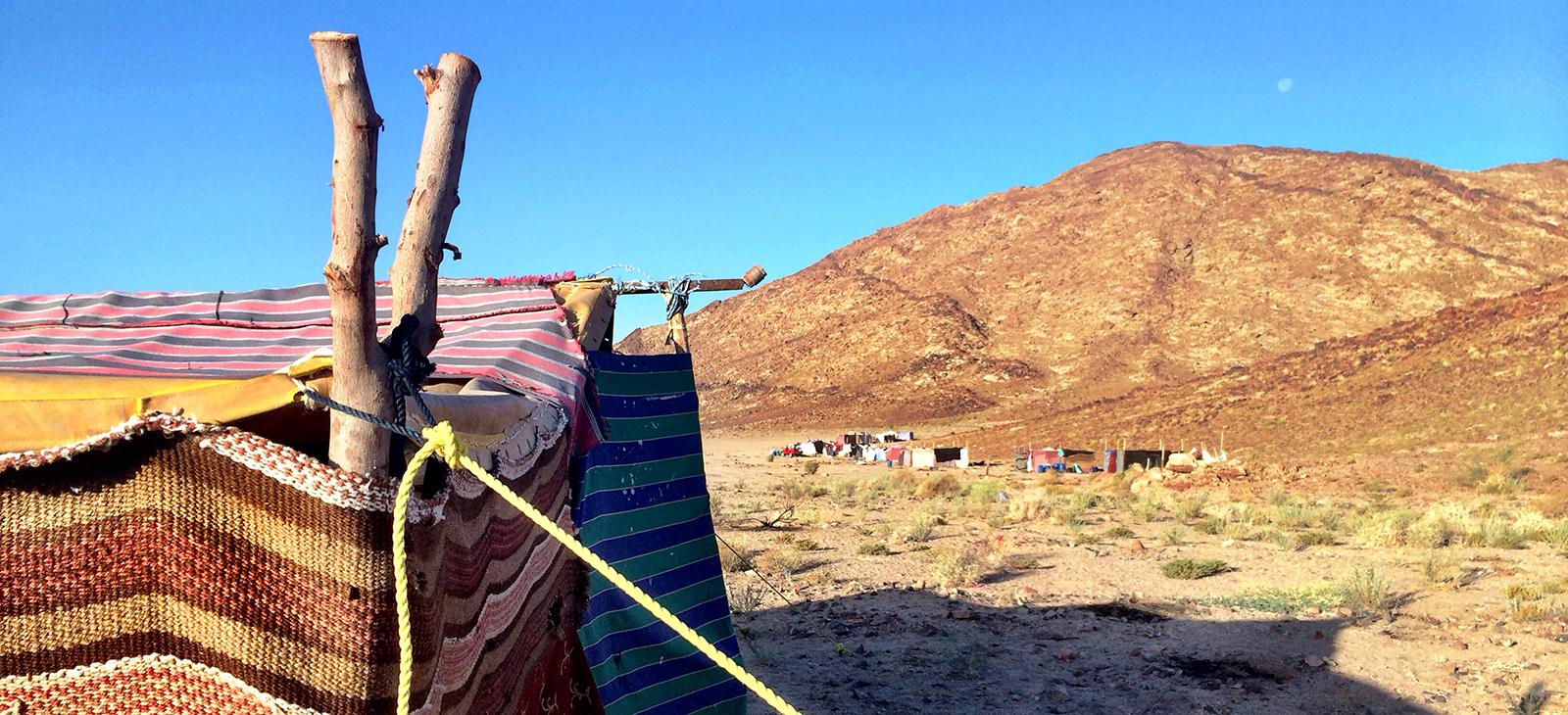bedouin-rent-desert.jpg
