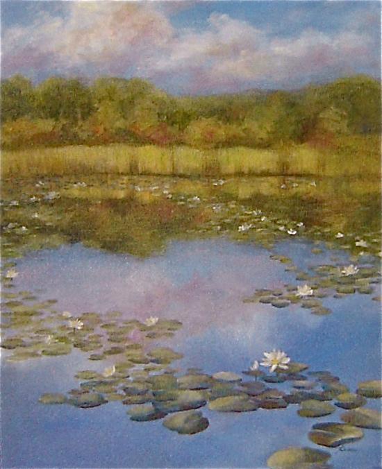 Daniel Wright Pond
