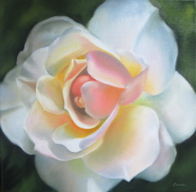 Heavenly Widened Rose