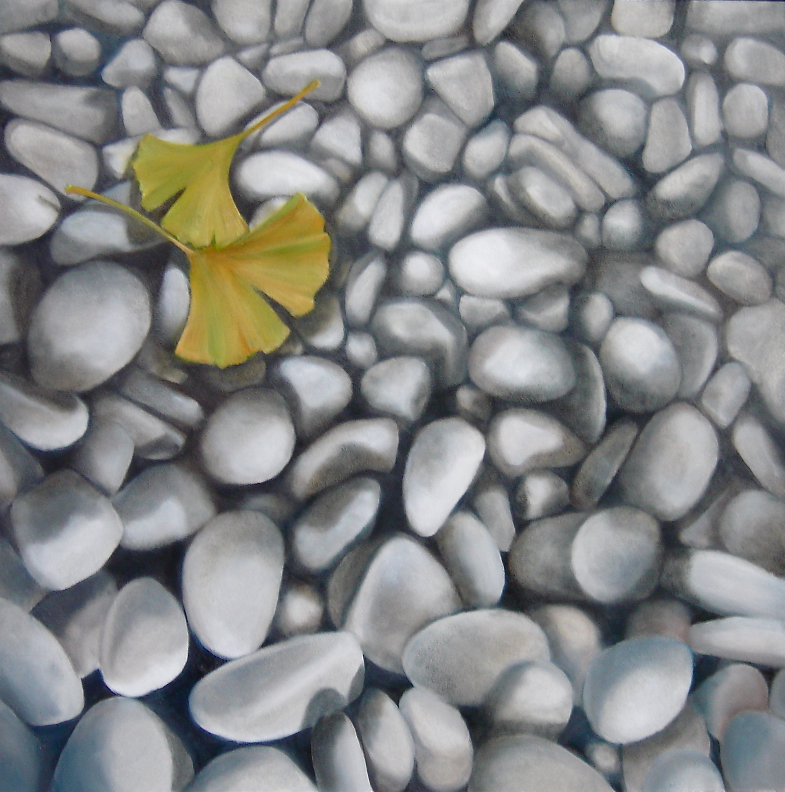 Ginkgo Leaves and Limestone
