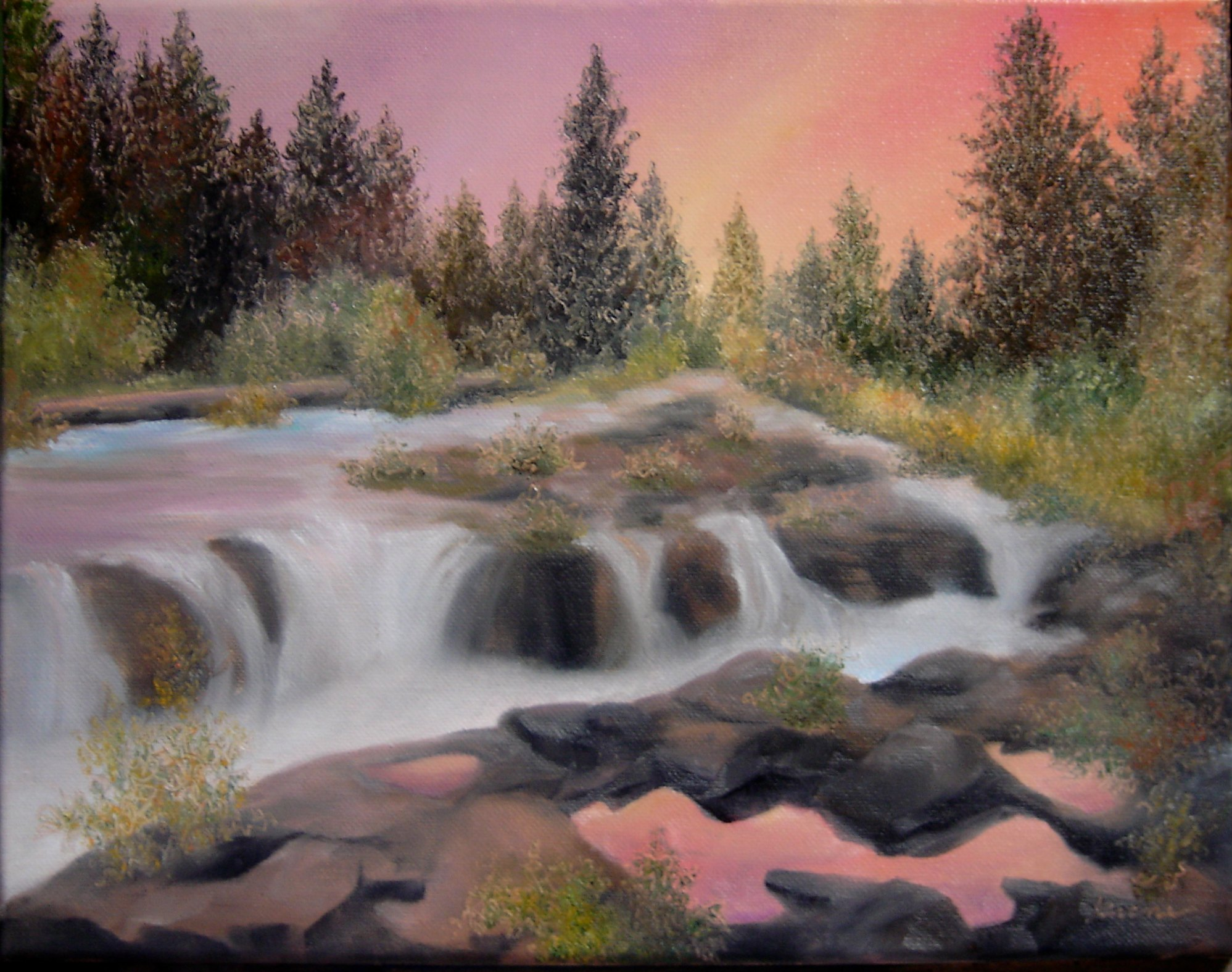 Another Trout Stream