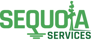 Sequoia Services.png