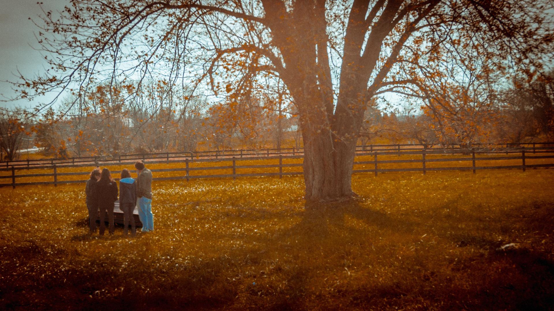 Apple Tree (Short Film).00_05_47_06.Still008.jpg