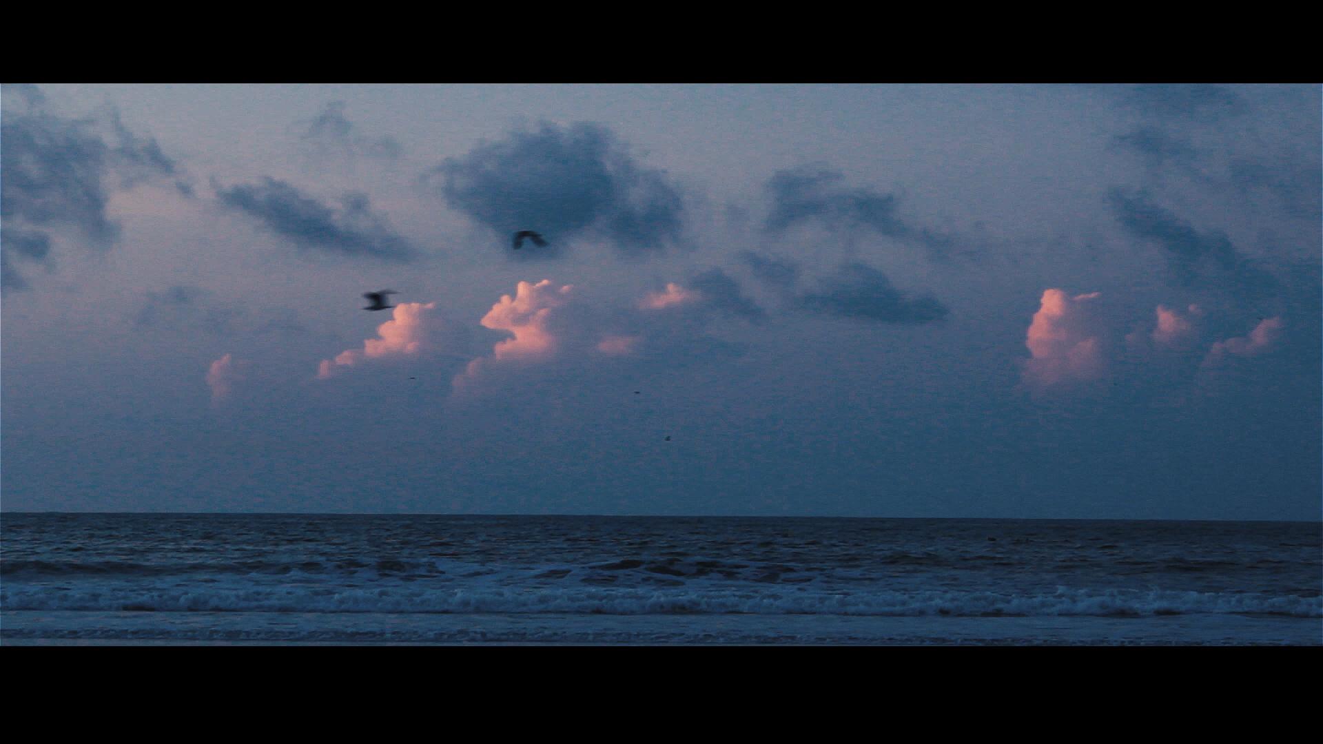 Sunrise in Folly.00_00_21_01.Still002.jpg
