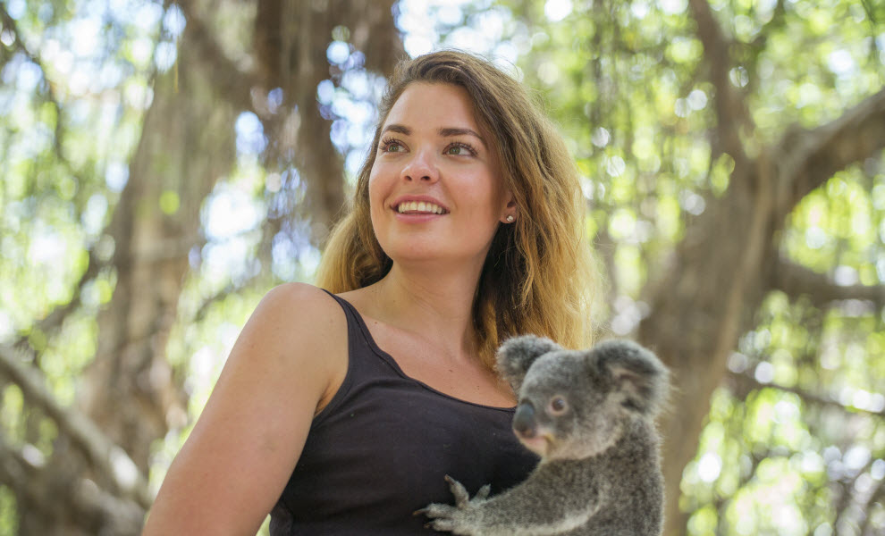 animal-encounters-koala-UniBRIDGE.jpg