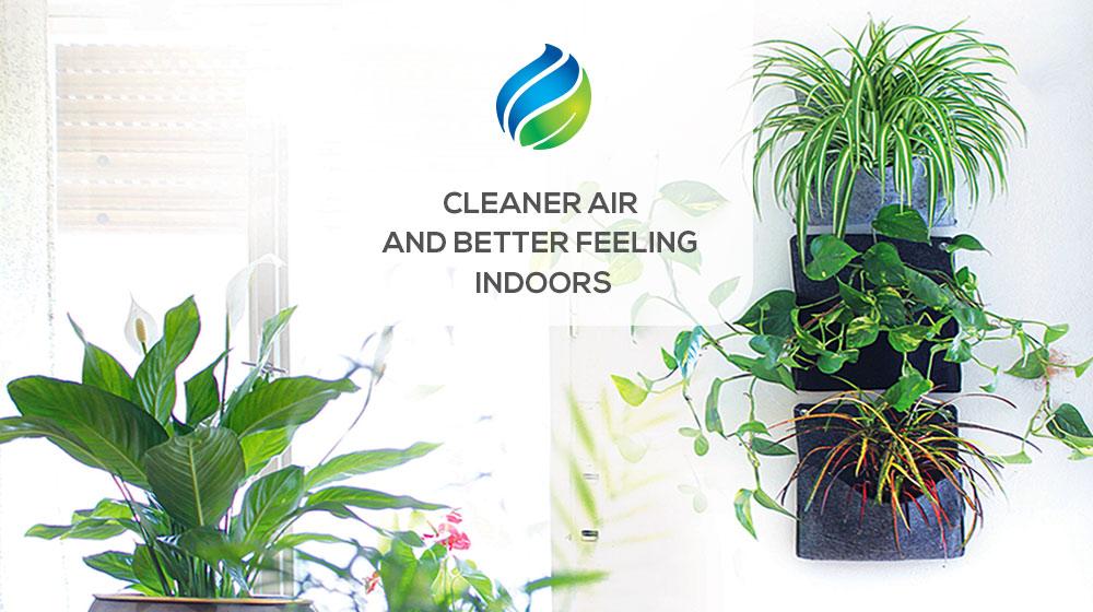 CLEANER-AIR.jpg