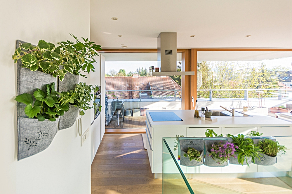 Žepki polni zelišč in okrasnih rastlin, ki čistijo zrak.