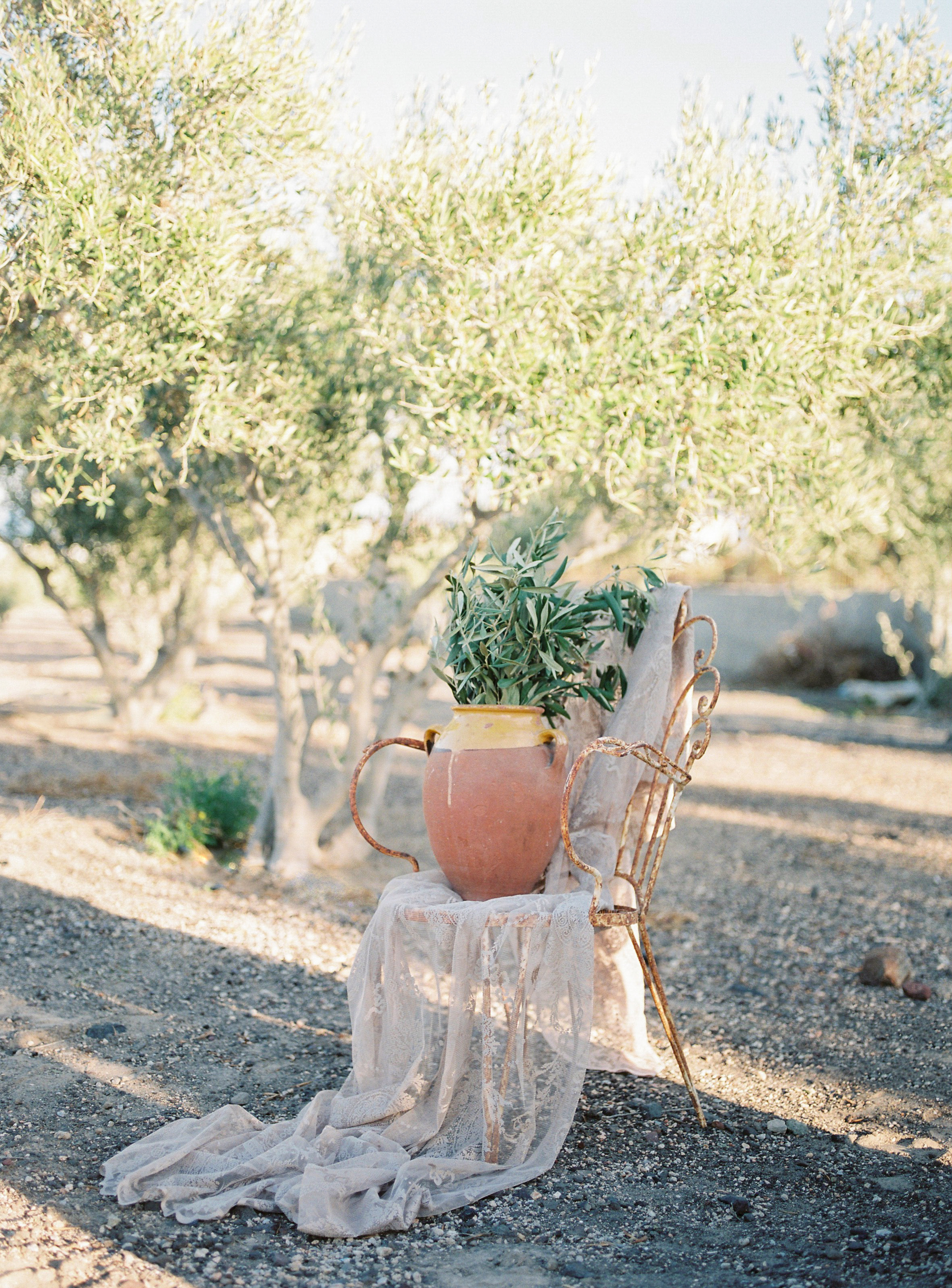 Countryside Olivegrove by CHYMO & MORE Photography-13.jpg