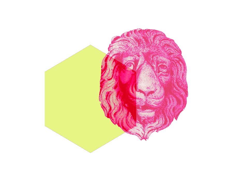 LionOption.png