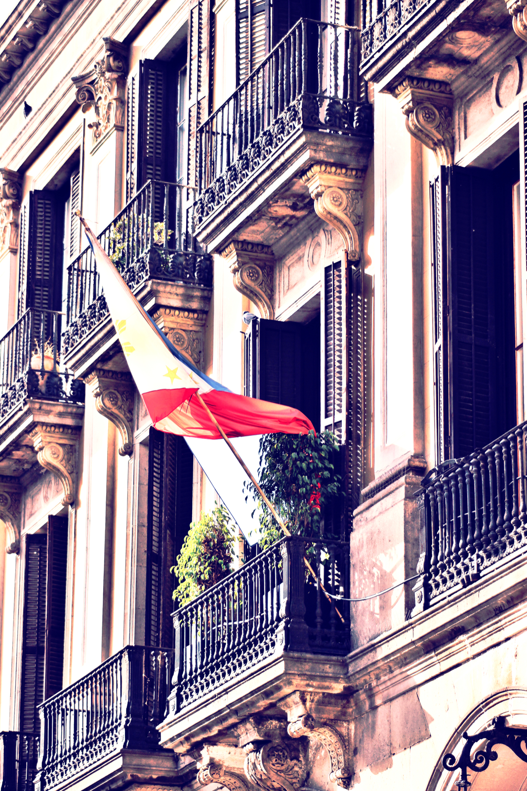 Balcony Flag.jpeg
