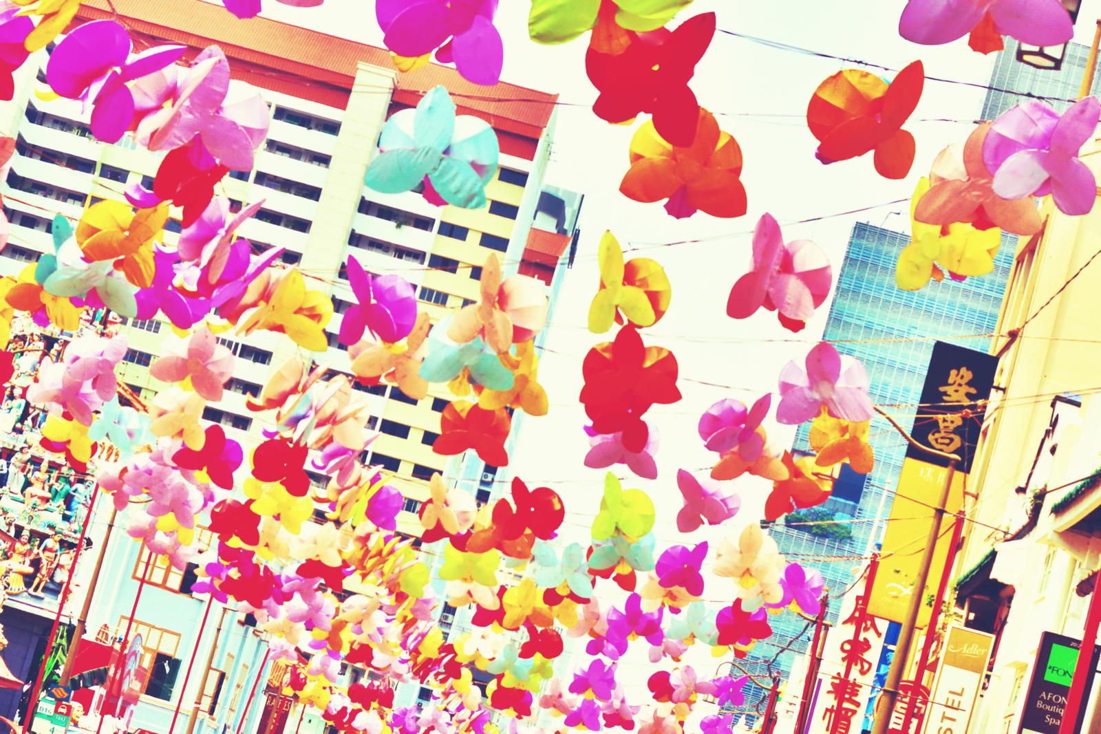 Butterflies.jpeg