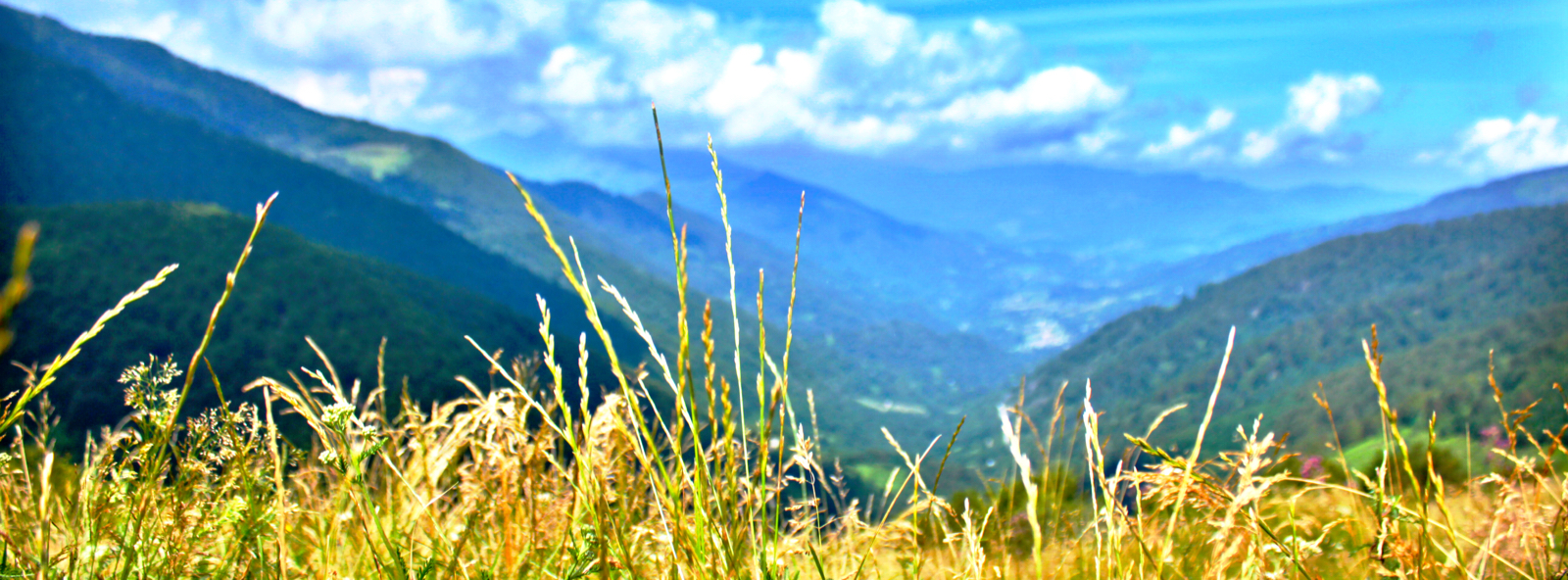 Mountain panoramic .jpeg