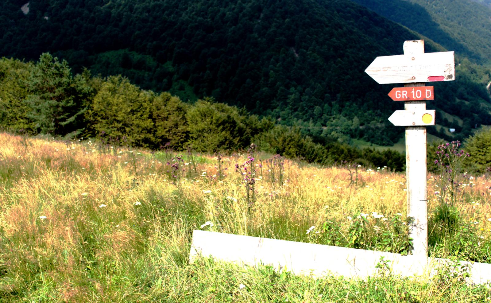 Mountains sign .jpeg