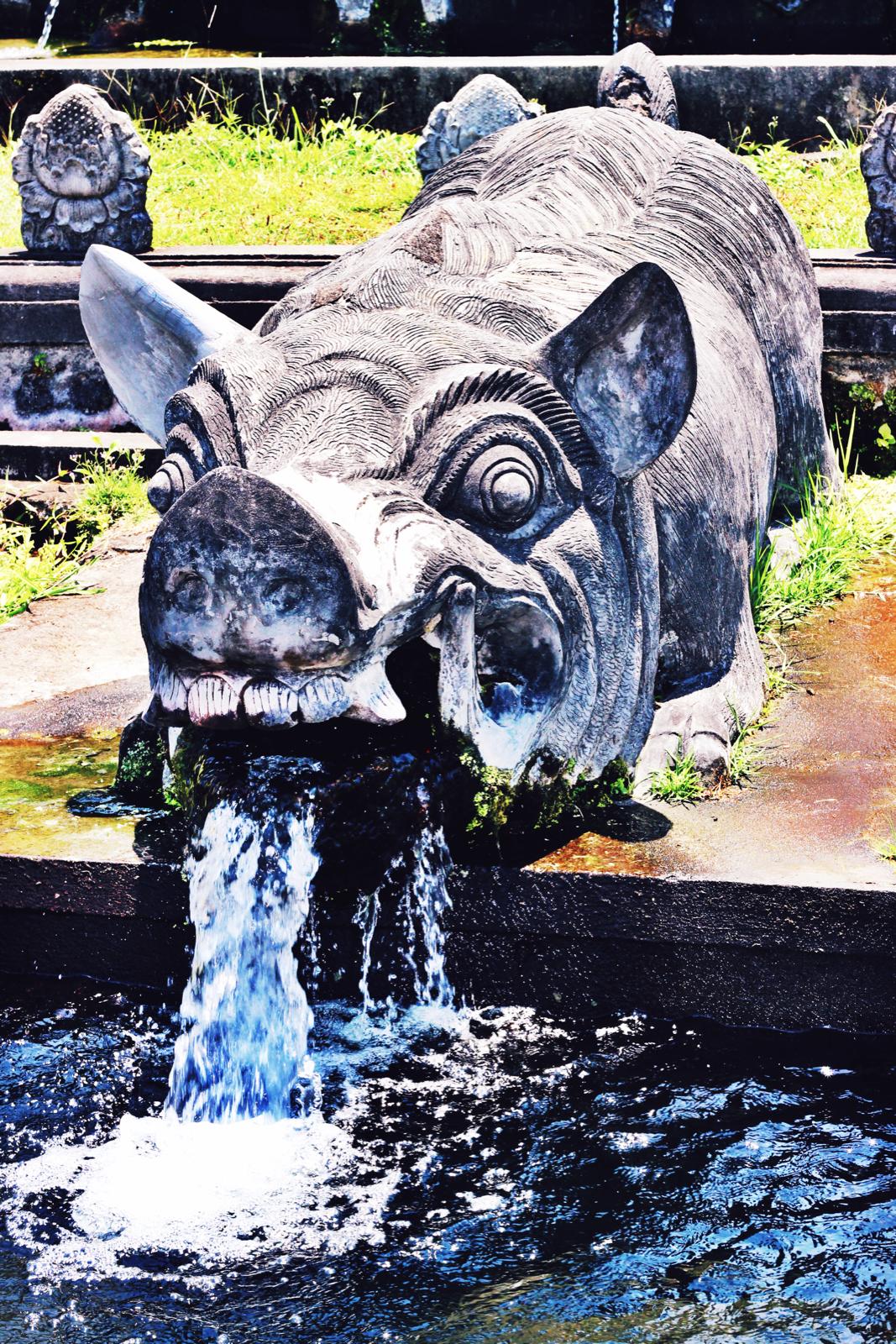 Pig fountain.jpeg