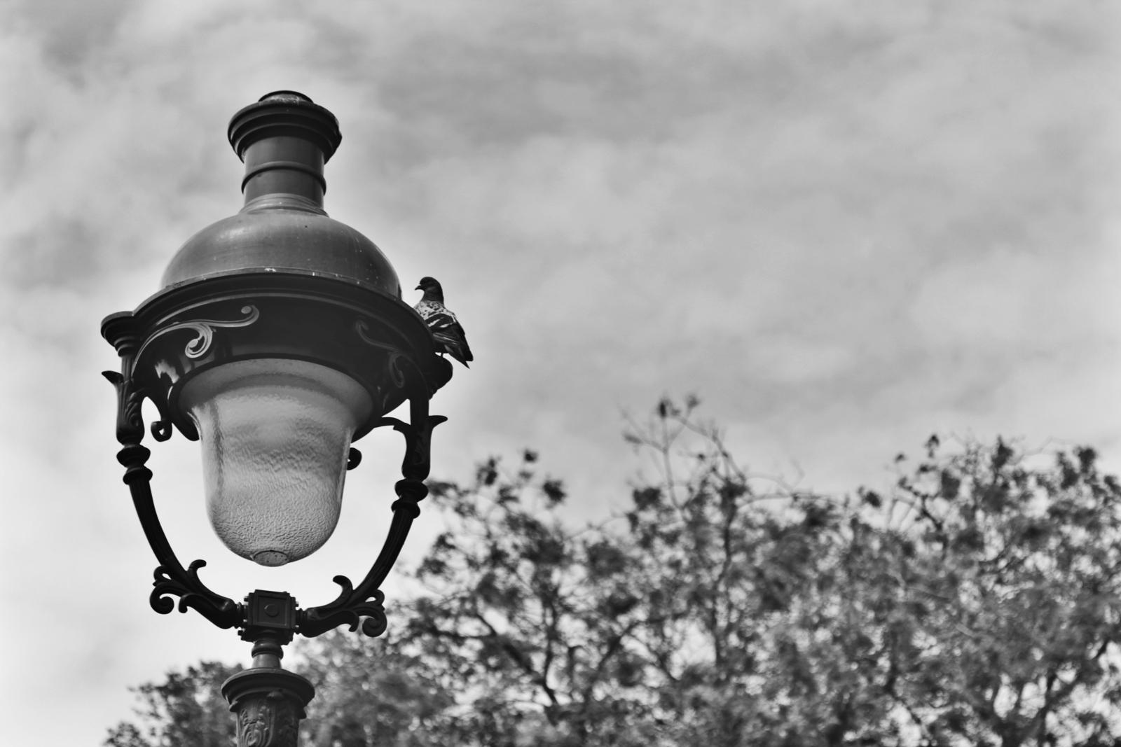Iron street lamp.jpeg