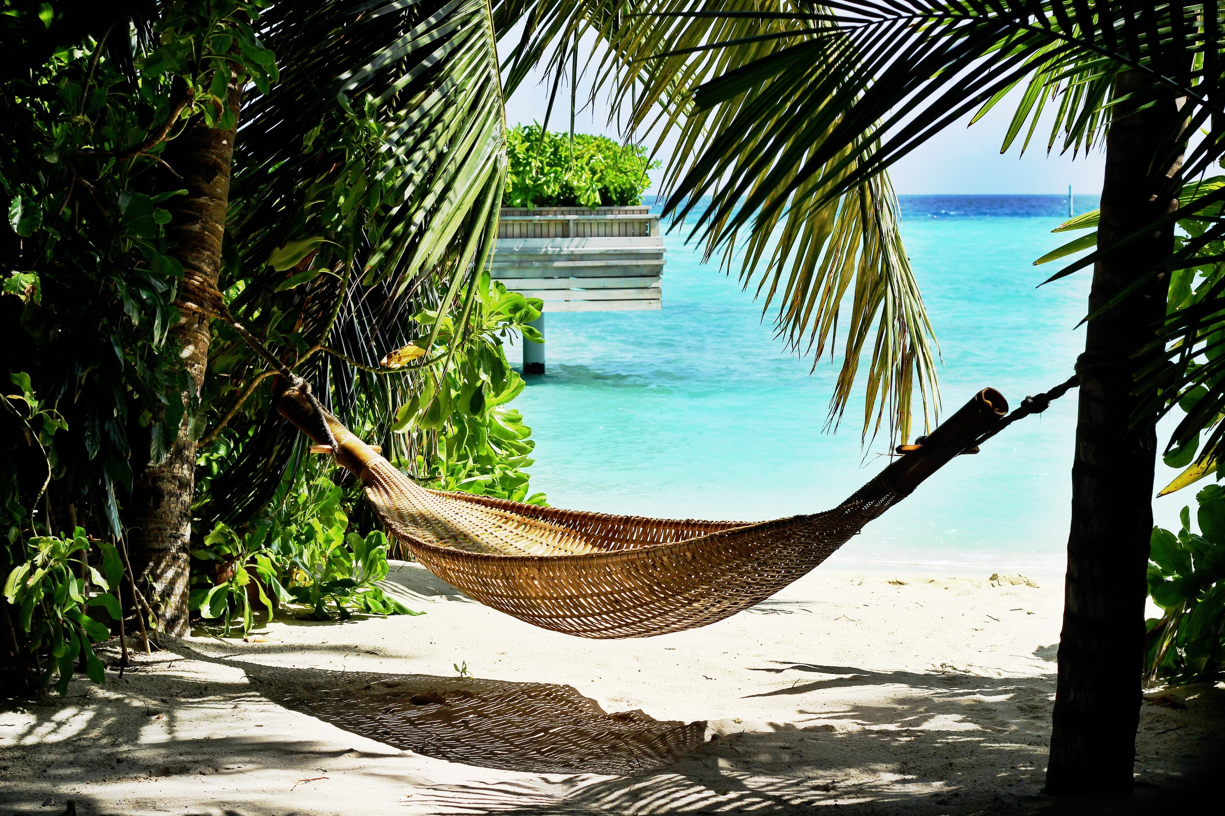 Sights like this are the norm in the Maldives. aka Heaven On Earth