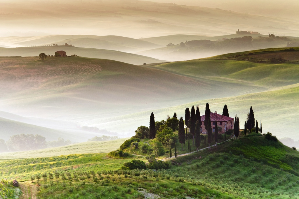 Tuscany's famous cypress trees and landscapes.