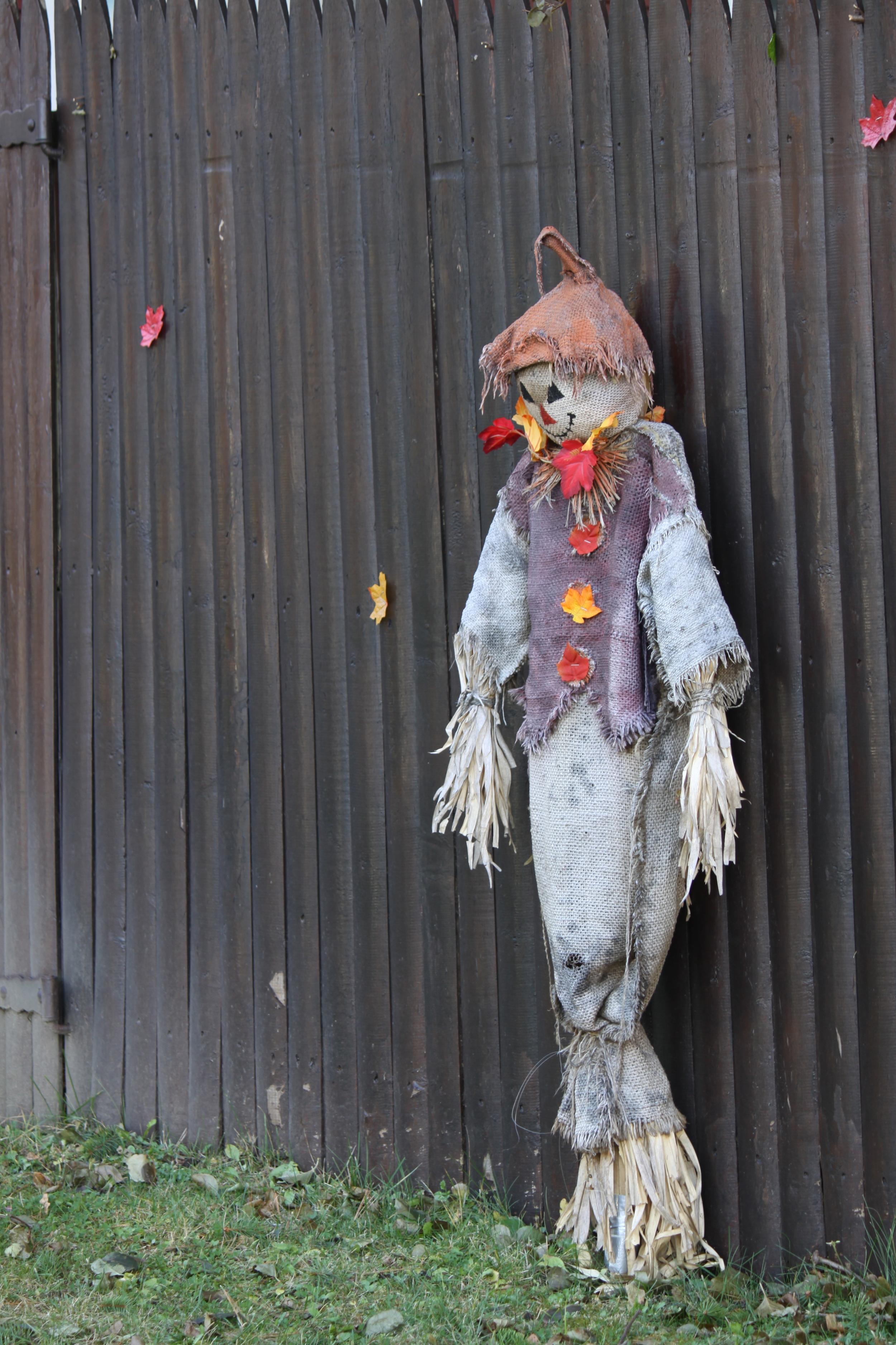 Spare scarecrow anyone??
