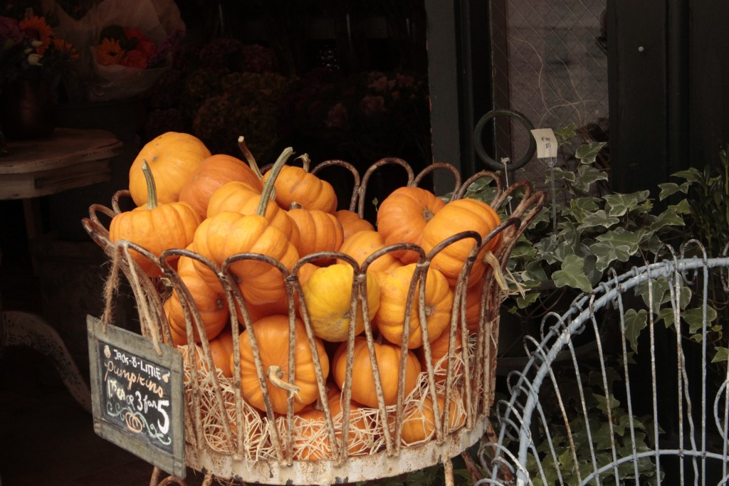 Pumpkins in Beacon Hill