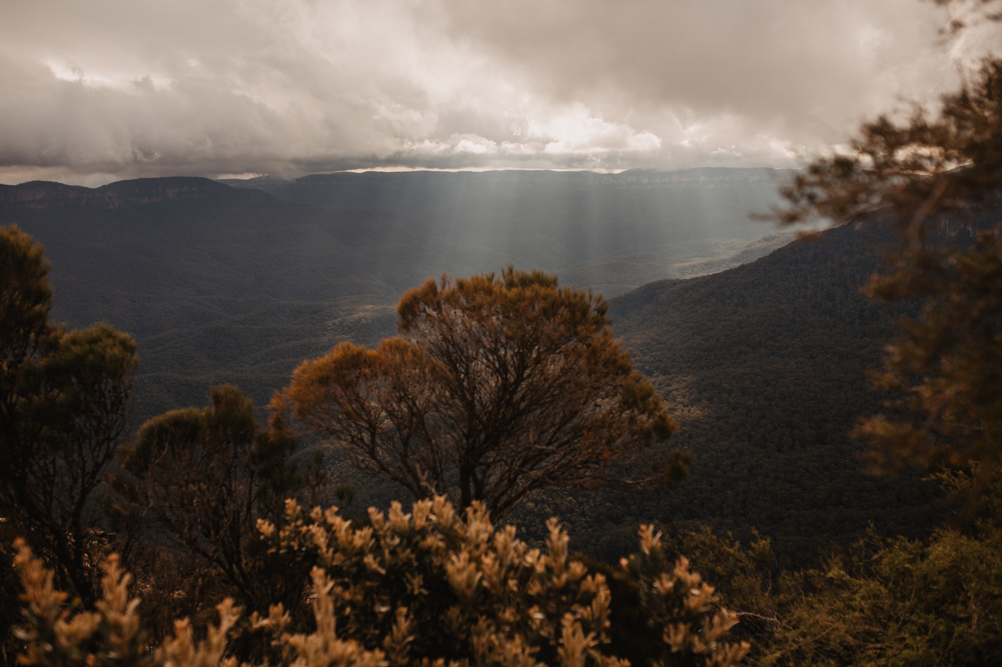 blue-mountains-australia-elopement-323.jpg