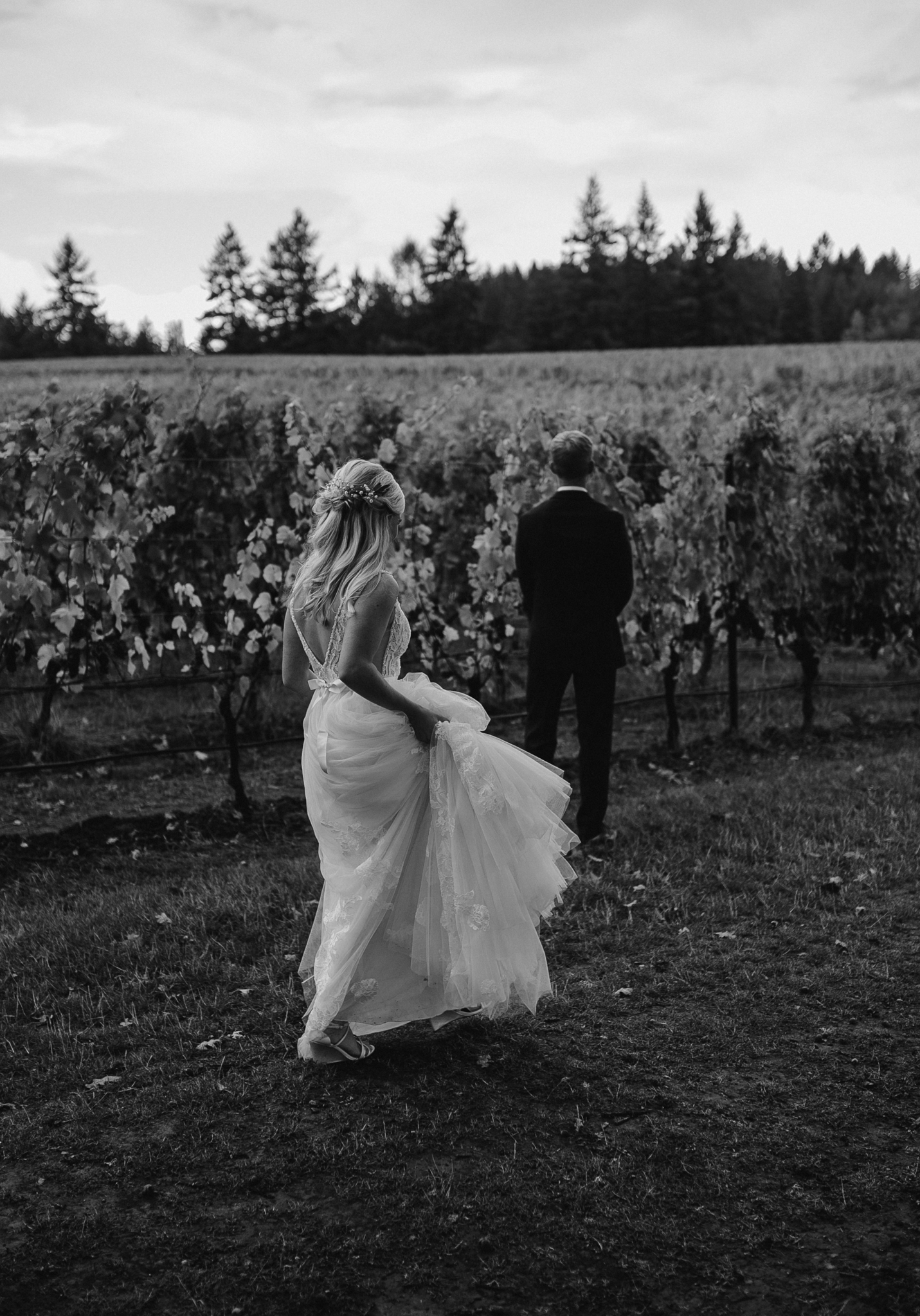 zenith-vineyard-oregon-summer-wedding-172.jpg