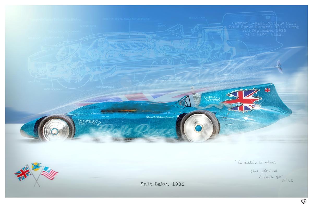 Bluebird-Run-20x30.jpg