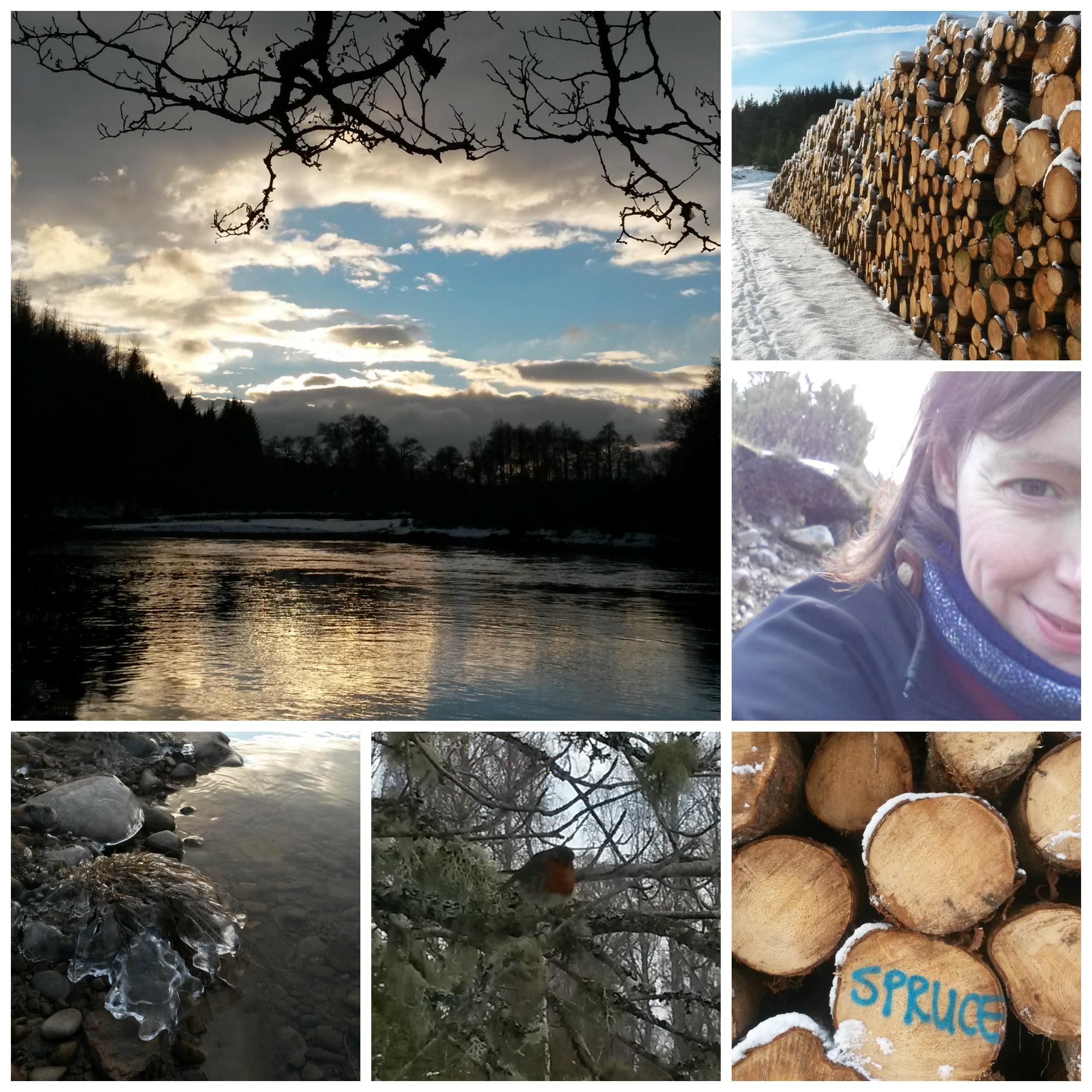 bothy- river wood robin and me.jpg