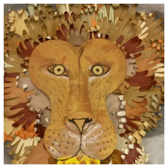 Aslan - cardboard hands made by each participant to form his magnificent mane.