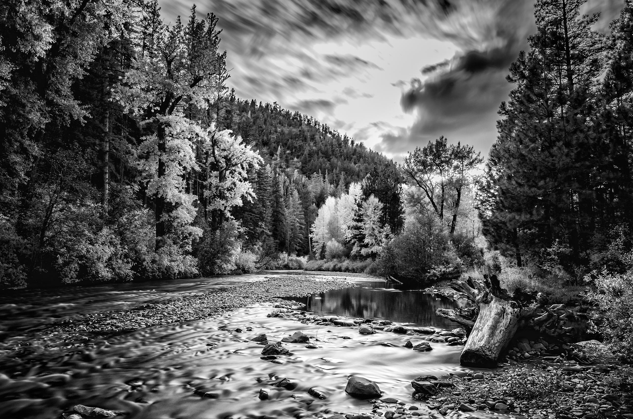 Lolo Creek, Montana