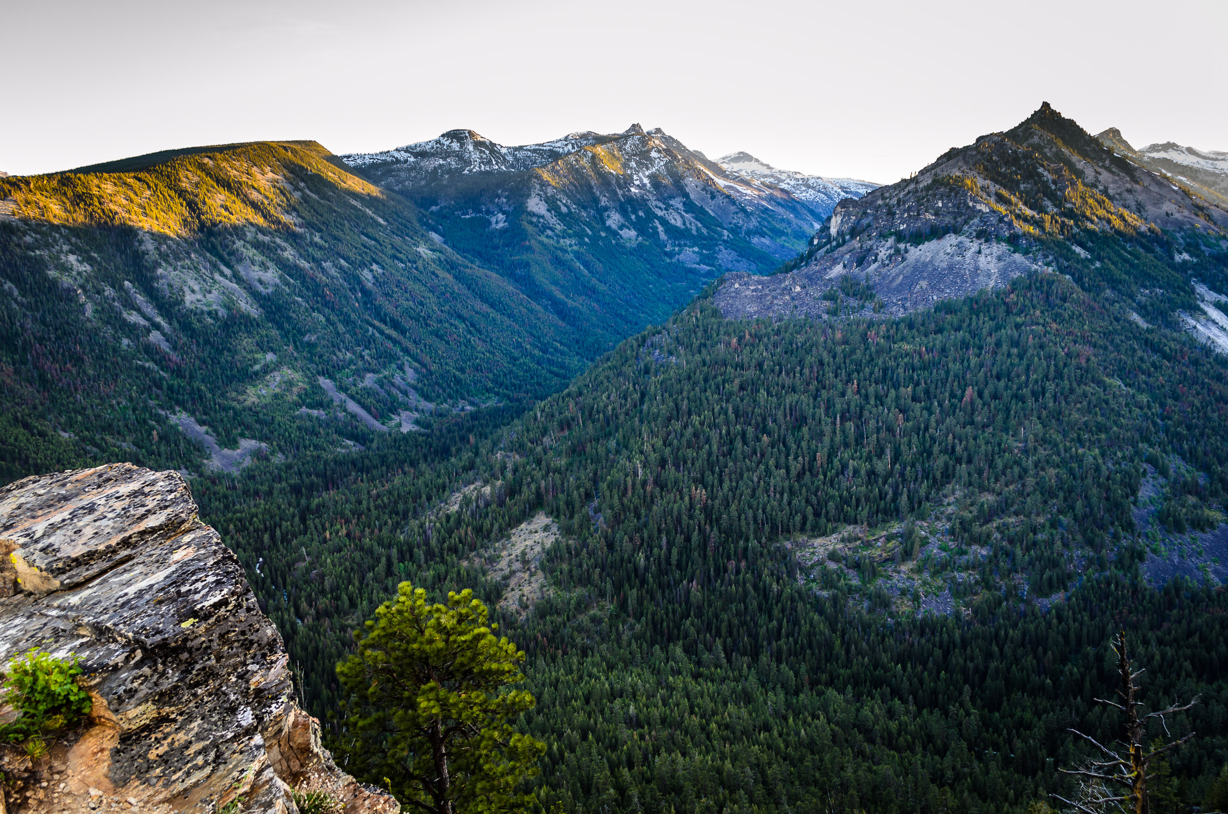 Lolo National Forest, Montana
