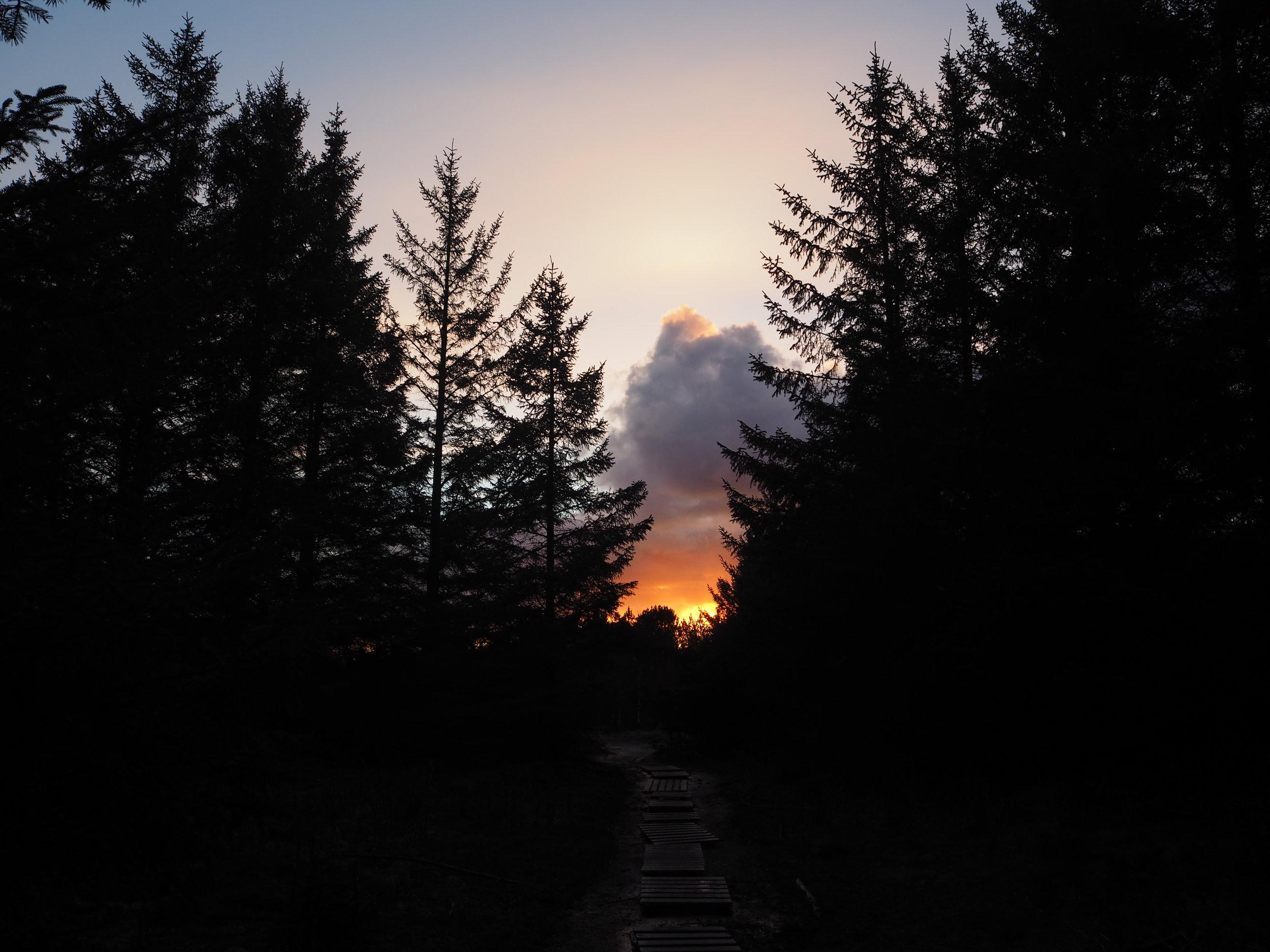 Bildene er tatt ved Altlanten Ungdomsskole og i Lasken på våres kveldstur i gårkveld. Magisk stemning.