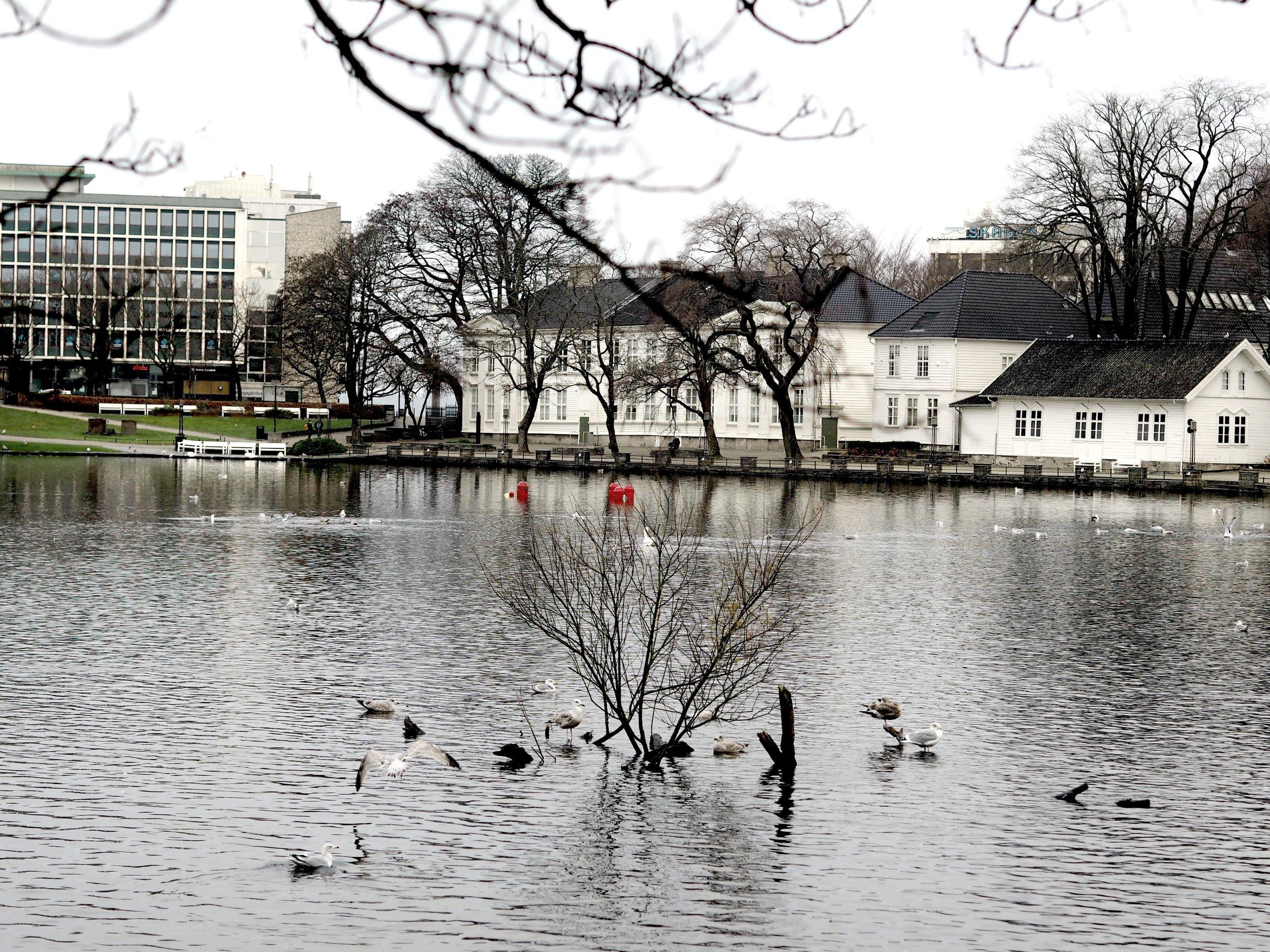 Stavanger by,