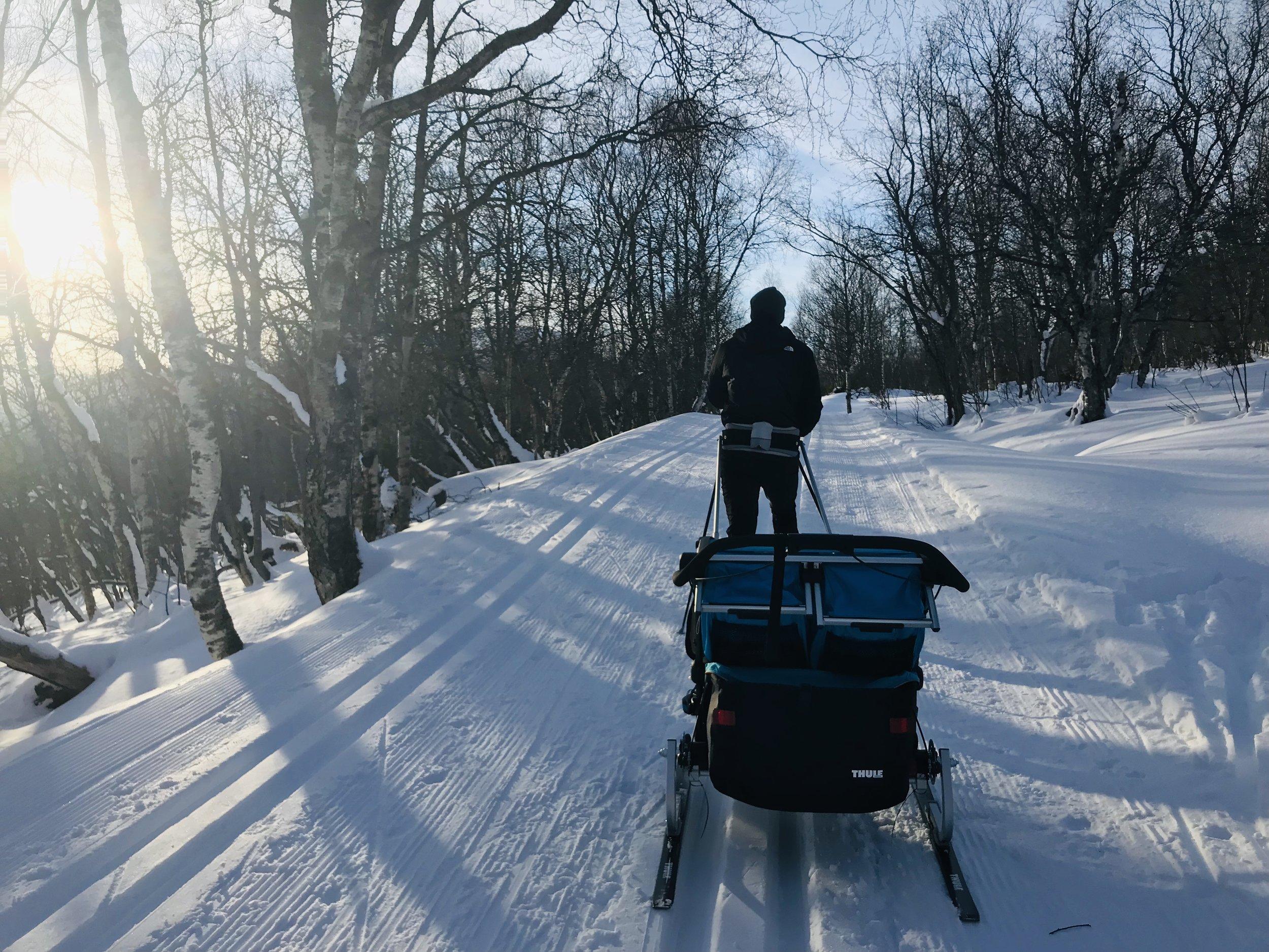 langrenn med thule sportsvogn 2, skikit