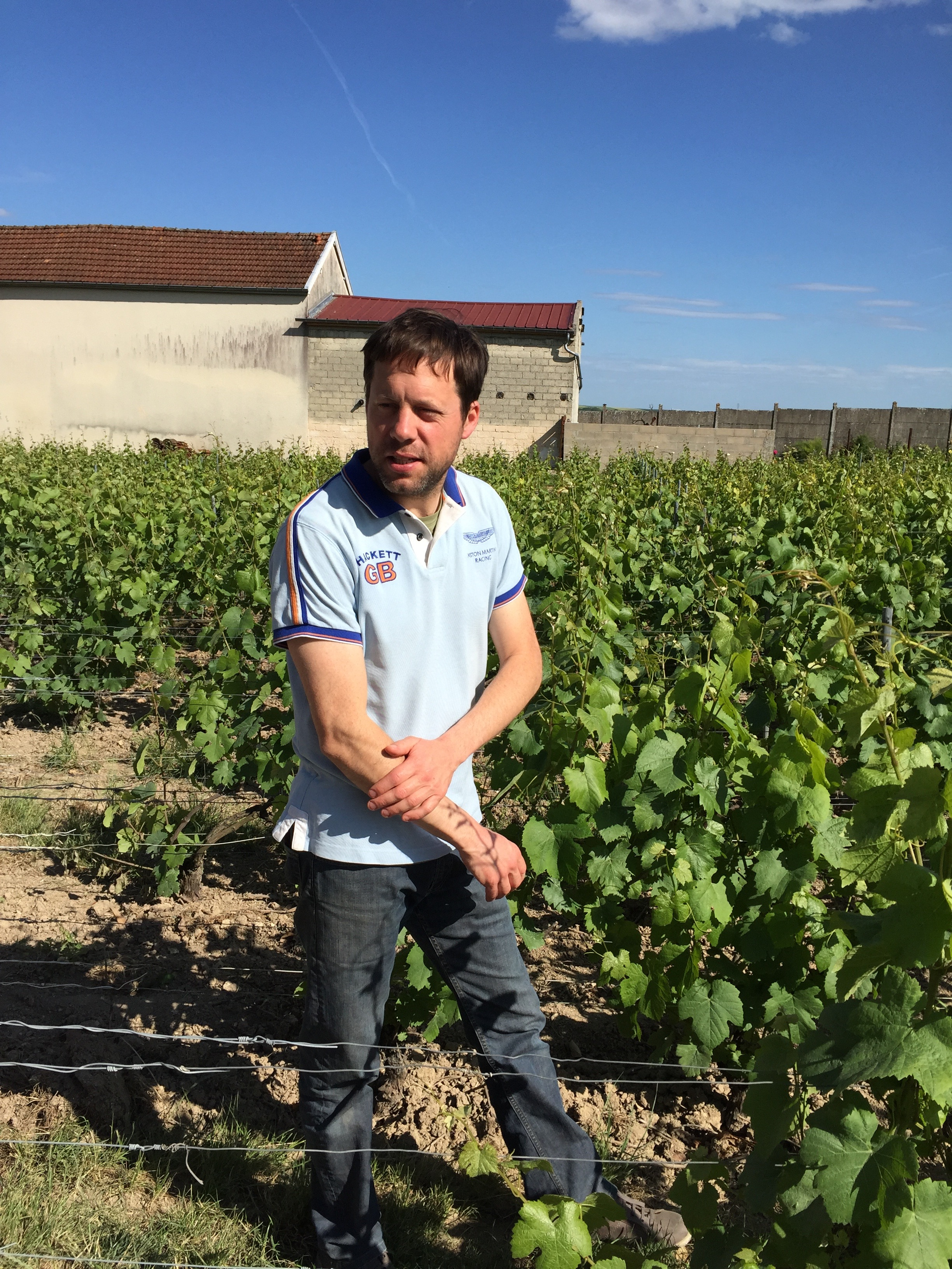 Benîot in the vines