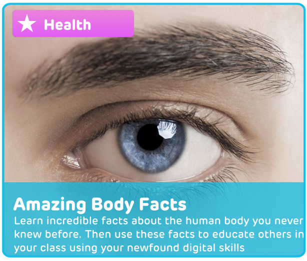 Human Body Facts Digital Activity