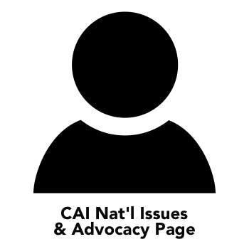 lac icon - issue & advocacy.png