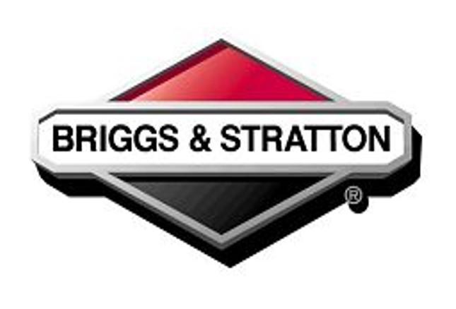 Briggs Stratton-Silver.jpg