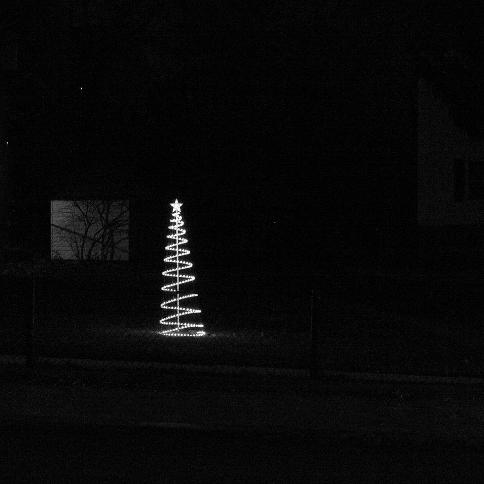 Spiraling Tree with Star, Salem, MA | 2014