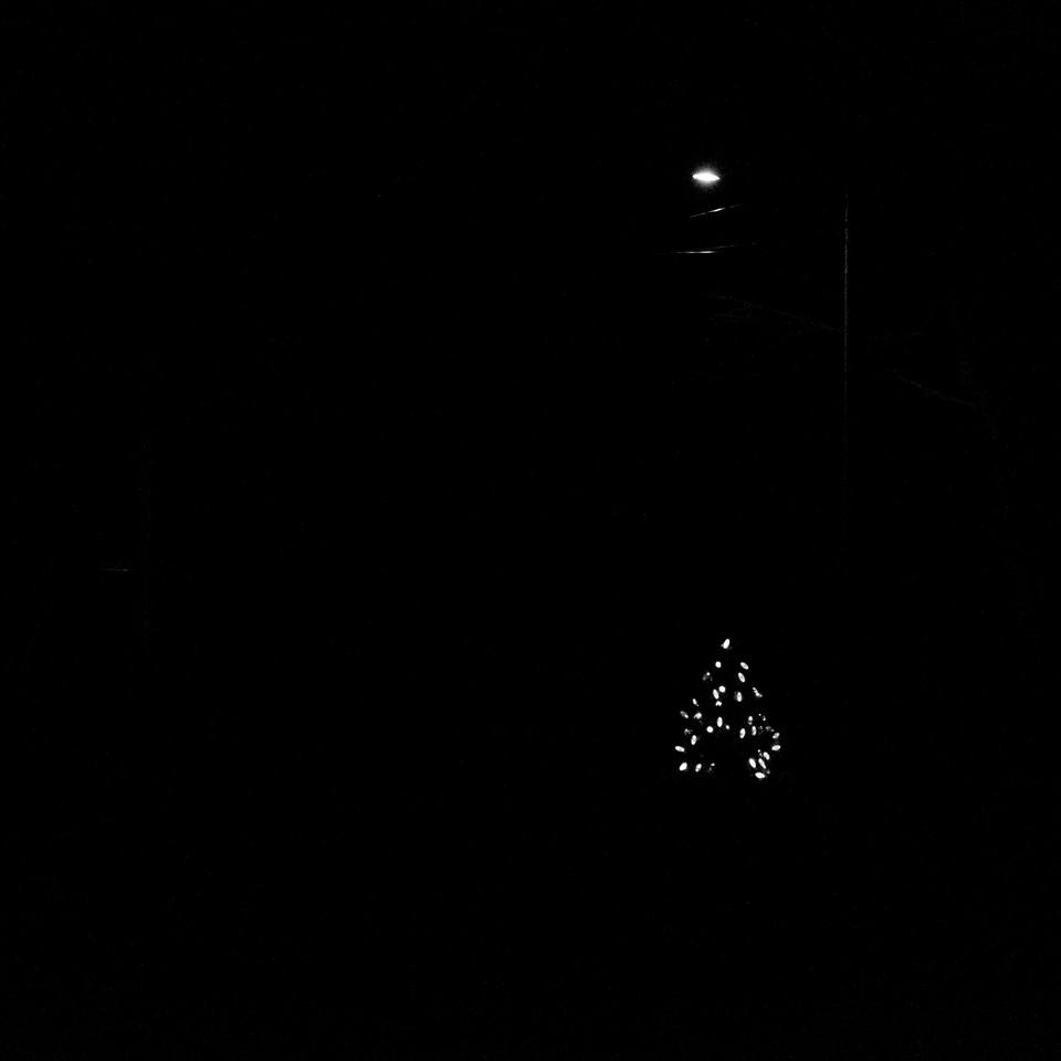 Little tree & Spotlight, Marblehead, MA | 2015