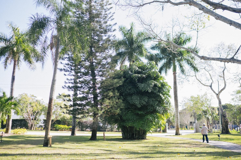 020117-florida-4380-Edit.jpg