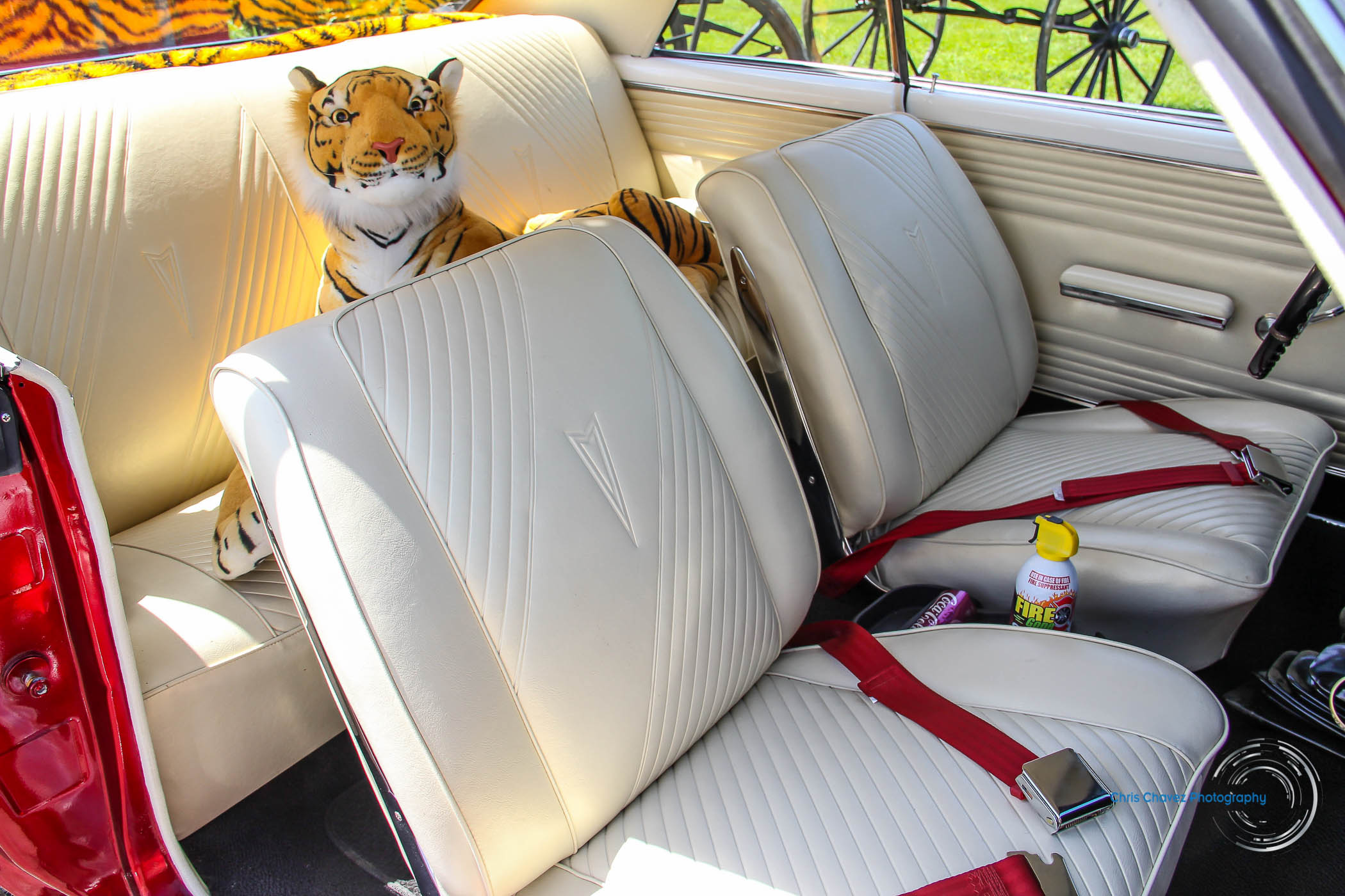 65.Pontiac.GTO.WM-12.jpg