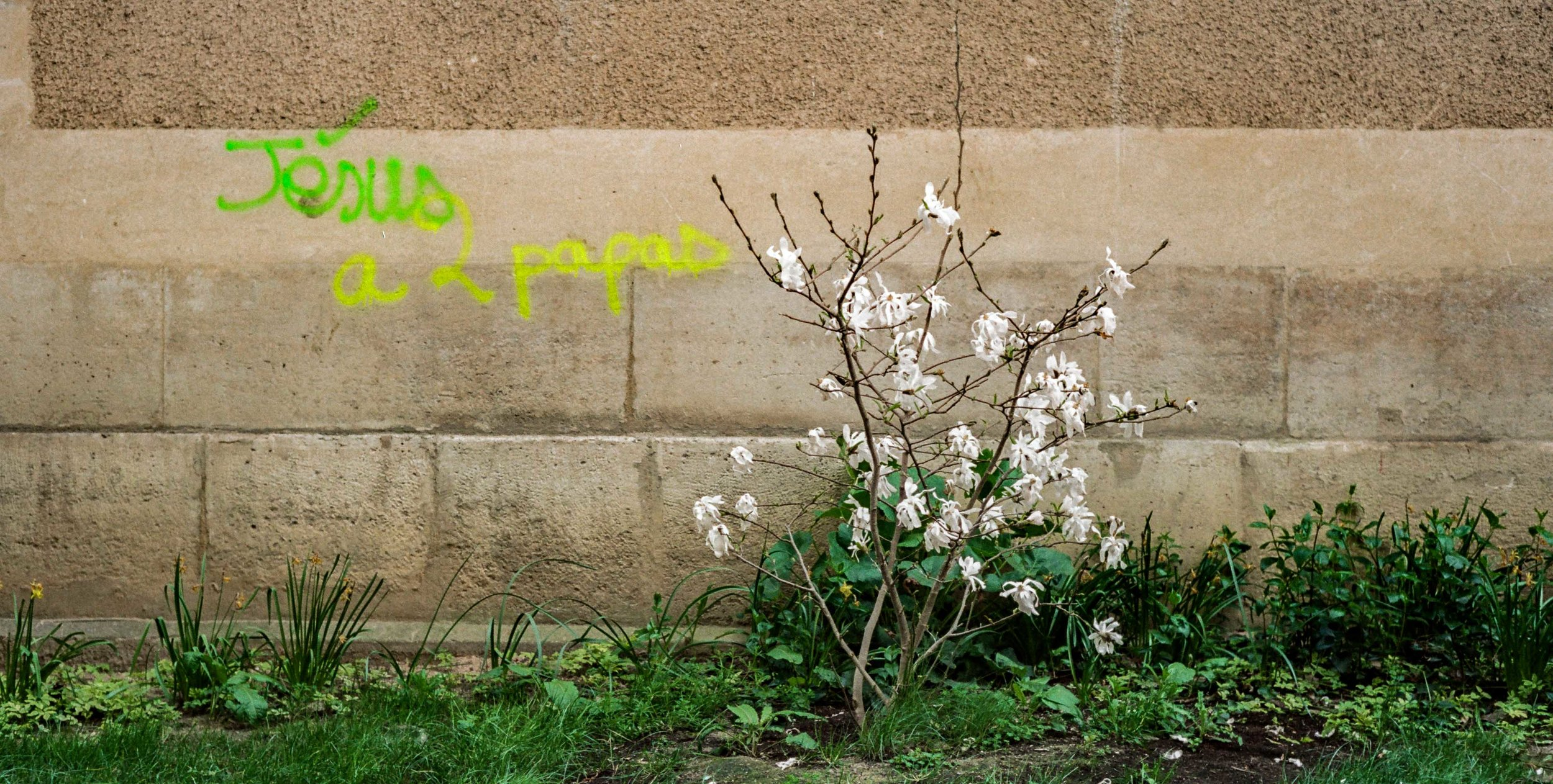 Mitchell Sturm - France 19.04.19-41.jpg