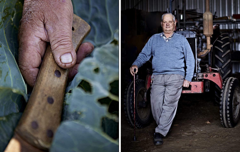 Kylie-Grinham-Farmer-Tractor-Cabbage.jpg