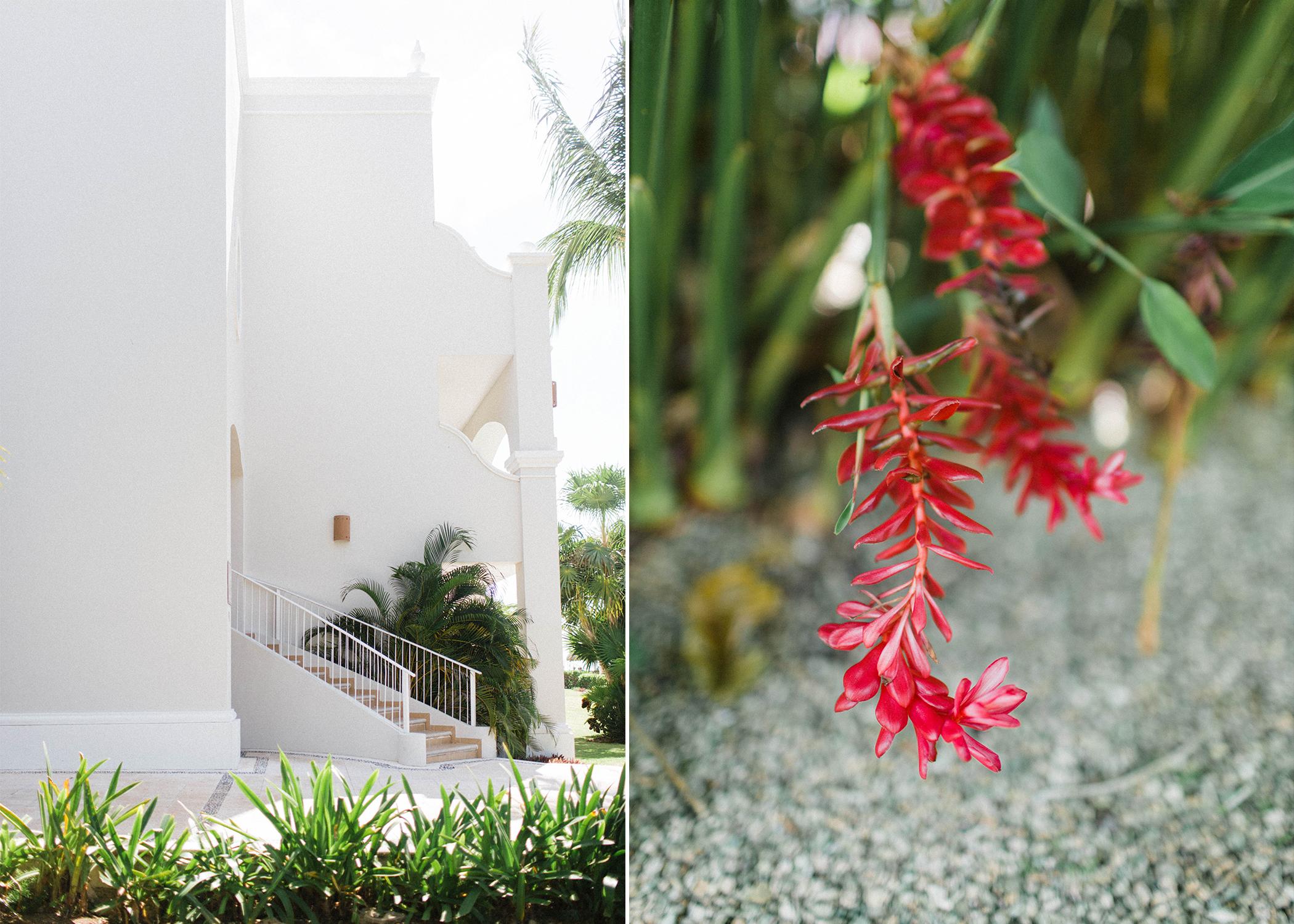 Destination Videographer Photographer Alma Films Tulum Mexico